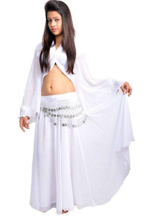 Wevez 3 Peice Chiffon / Georgette Belly Dance Costume