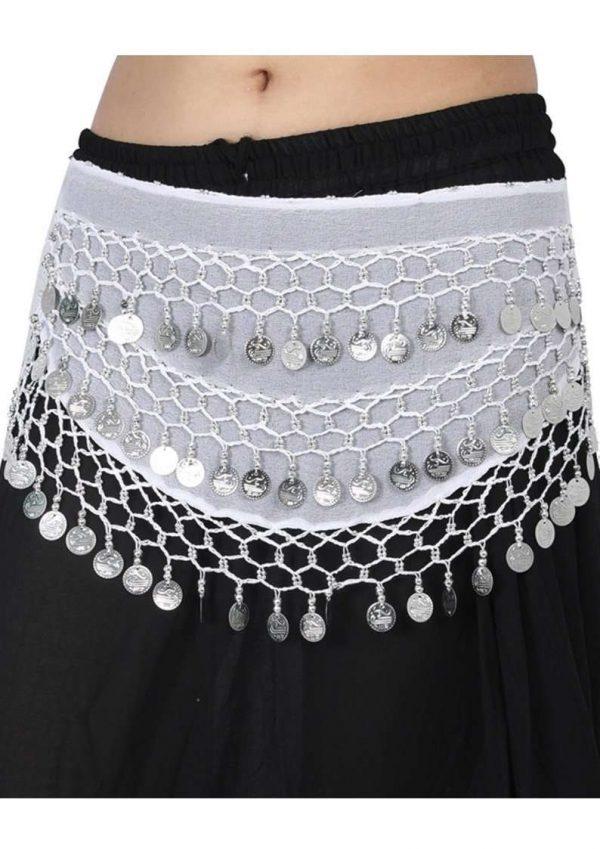 Wevez Belly Dancer Costume Halloween Waist Scarves- Assorted, Pack Of 10